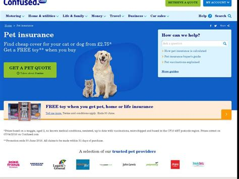 pet insurance quotes pet insurance anygator