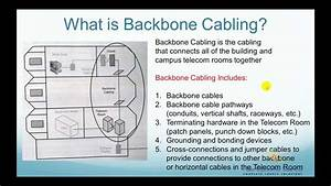 What Is Backbone Cabling  - Fo4sale Com