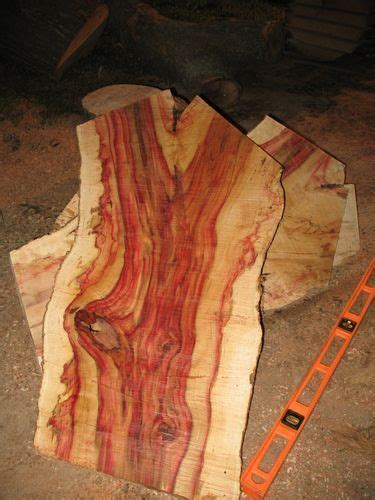 Boxelder Maple Wood Of highly figured wood   wood