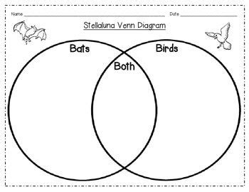 venn diagram  compare contrast bats  birds