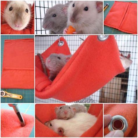 Hamster Hammock by Hamsters Hammocks And Rats On
