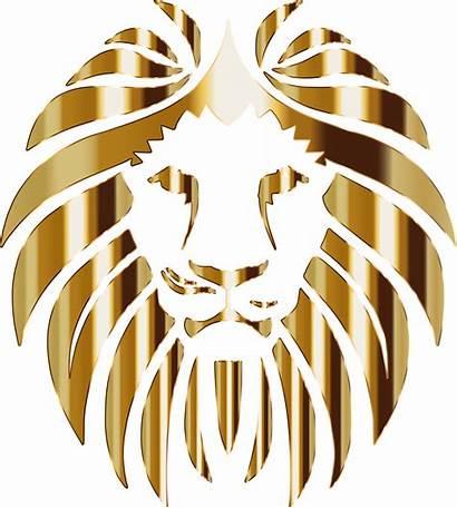 Lion Background Golden Clipart Logos Vector Svg