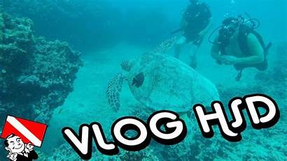 Scuba Honolulu Hawaii Shipwreck Sea Youtu Reef