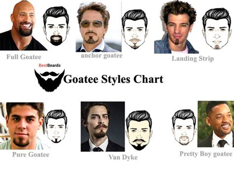 9 Best Goatee Styles Chart Images On Pinterest