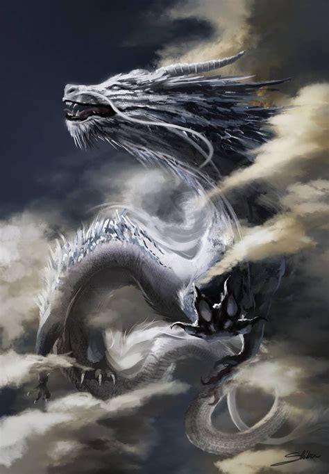 white dragon par skyrawathi dragon fantastique dragon
