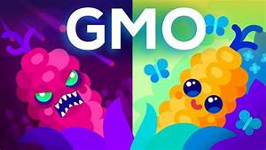 Are Gmos Good Or Bad  Genetic Engineering  U0026 Our Food
