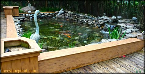 above ground koi ponds semi above ground koi pond installation by full service aquatics of summit nj koi pond