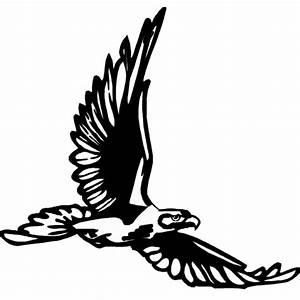 Disegno di Aquila in Volo da colorare per bambini