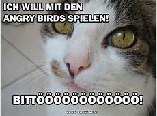 Cat Comics Witzige Katzenfotos bei Spielesnacksde