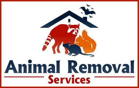 Charlottesville, Va Bat Removal Experts & Wildlife Control. Lsat Prep Courses Los Angeles. Attorney For Federal Employees. Factoring Higher Degree Polynomials. Allergic Reaction To Body Wash. Native American Substance Abuse. Life Insurance Co Of Alabama. Top Organizational Psychology Programs. Transfer Money From Usa To Uk