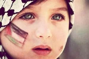 Fundraiser by Niaz Farighi : Relief for the Children of Gaza