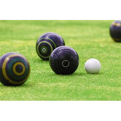 Competitive lawn bowlers set to compete at Provincial