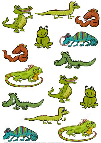 find    pictures  reptiles puzzle  printable puzzle games
