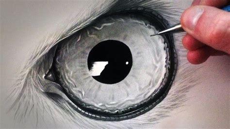 draw  owl eye lets draw   owl eyes