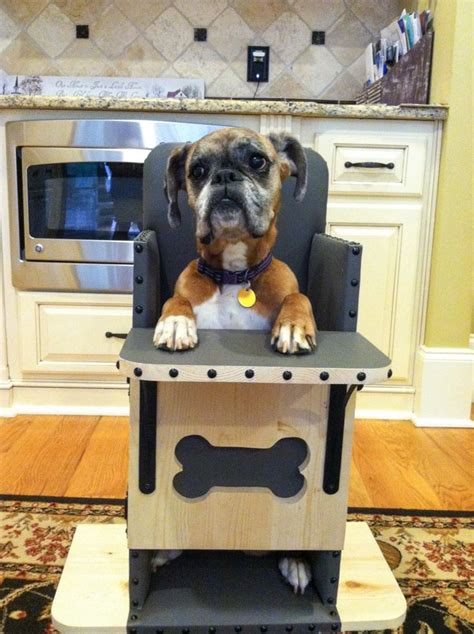 Bailey Chair Megaesophagus Uk by We Build Bailey Chairs For Dogs Diagnosed With Canine