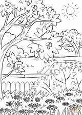 Coloring Summer Garden Nature Pages Printable Print sketch template