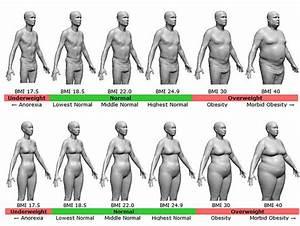 Know Your Body Fat Status  U2013 Fitness Blog