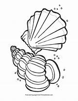 Seashells Coloring Seashell Pages Summer Printable Primarygames Pdf Cartoon sketch template