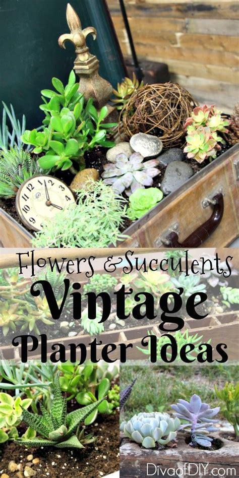 unique flower planter ideas  flowers  succulents