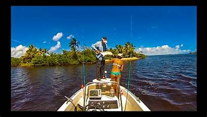 Fishing Inshore Stuart Snook Florida South