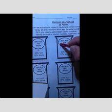 Osmosis Worksheet For Sub Youtube
