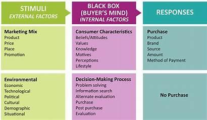 Box Consumer Behavior Marketing Stimuli External Internal