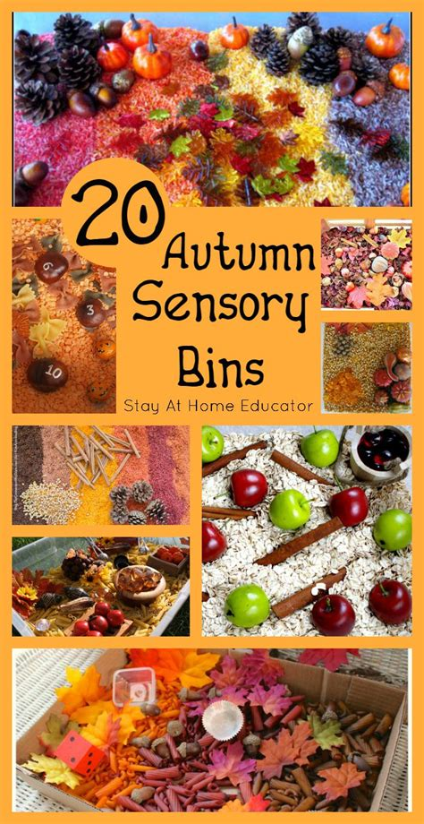 wow 20 autumn sensory bins for any fall preschool 449 | Wow 20 autumn sensory bins perfect for any fall preschool theme Stay At Home Educator