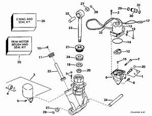 Evinrude Power Trim  Tilt Hydraulic Assembly Parts For 1998