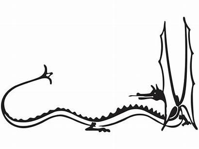 Smaug Drawing Lotr Tolkien Dragon Decal Hobbit