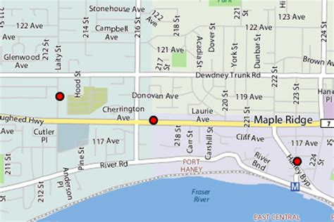 maple ridge bed bugs canada bed bug vancouver