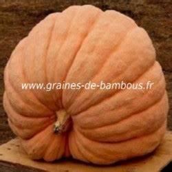 Potiron Magasin En Ligne : potiron atlantic giant pumpkin seeds graines de ~ Dailycaller-alerts.com Idées de Décoration