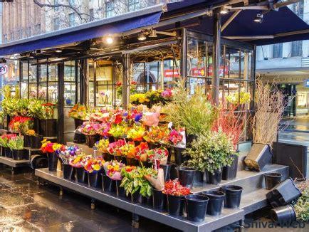 build  flower shop website templates design diy setup