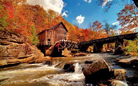 Hd Fall Pumpkin Wallpaper Foto Paesaggi Hd Fotohd