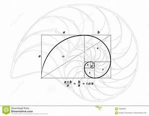 Goldener Schnitt Verhältnis : goldener schnitt und oberteil zeichnen auf wei vektor vektor abbildung bild 70058034 ~ Watch28wear.com Haus und Dekorationen