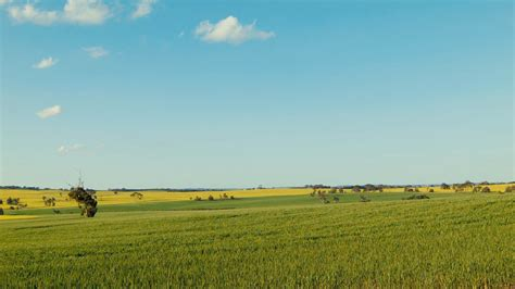time lapse  australian farm landscape  spring stock