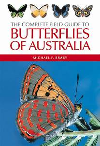 Pdf  The Complete Field Guide To Butterflies Of Australia