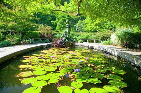 Secret Garden Central Park by The Secret Garden Central Park Photograph By Andria Patino
