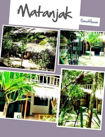 matanjak guest house updated  prices reviews