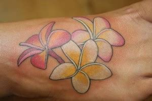plumeria tattoos designs ideas  meaning tattoos