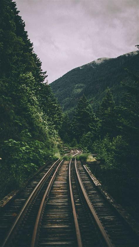 floresta trilho de trem fundo tumblr xuxu pinterest