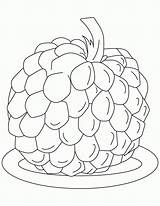 Apple Coloring Pages Sugar Fruit Custard Colouring Popular Visit sketch template