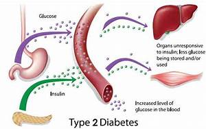 New Drugs For Diabetes Type 2 2014