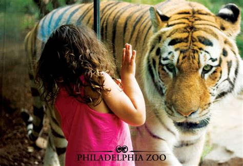 zoo philadelphia membership tiger deluxe philly admission season save break deal expansion dining tickets approved 5m pass teacher summer frugalphillymom