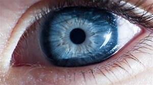 Les Yeux Les Plus Rare : l 39 tude sant du jour les personnes aux yeux bleus ont plus de risque d 39 tre alcooliques lci ~ Nature-et-papiers.com Idées de Décoration