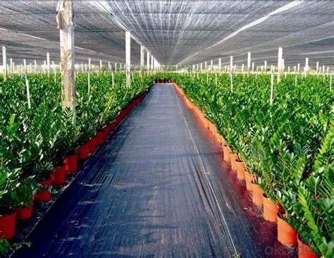 buy ground cover weed mat pp woven fabric  cloth  agriculture  greenhouse pricesize