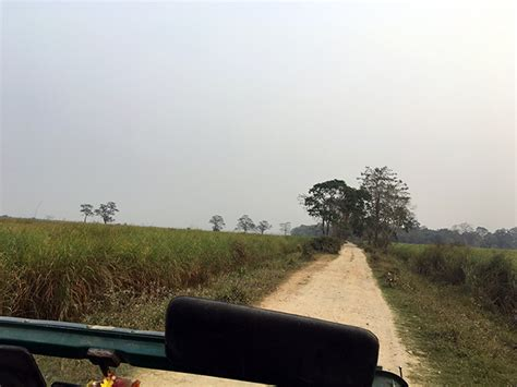 kaziranga national park quick guide crossing tourist wi gives fi village access office main which there