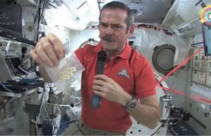 Videos: Canadian astronaut Chris Hadfield answers ...
