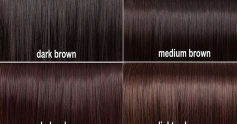shades  brown hair pinterest dark auburn charts  hair color charts