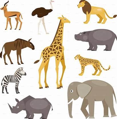 Animals Savanna Savannah