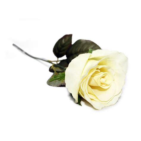 Paling Populer 17+ Gambar Setangkai Mawar Putih Gambar